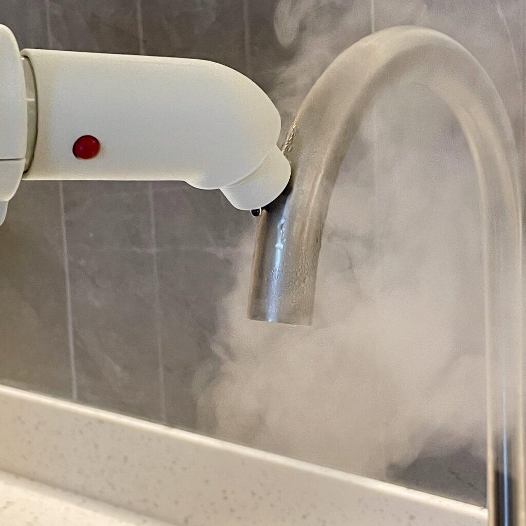 Ecovitta Steam Cleaner